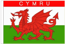 Wales Cymru 3' x 2' Medium-Sized Sleeved Flag